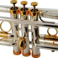 Centertone Shepards Crook Eb Cornet