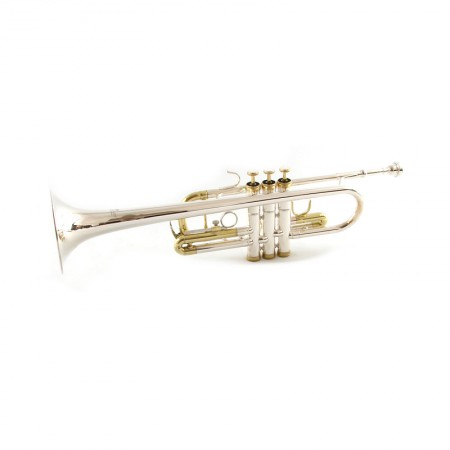 Model C Silver with Gold Trumpet
