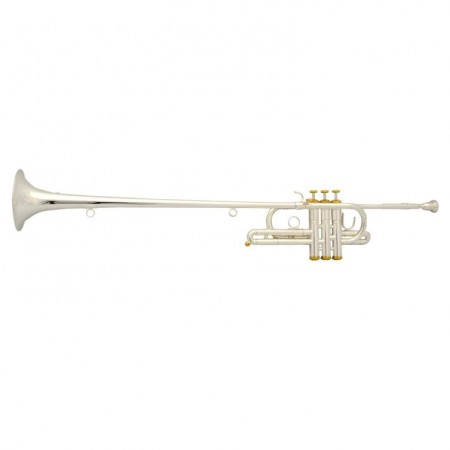 Elite Herald Trumpet Silver & Gold Plated