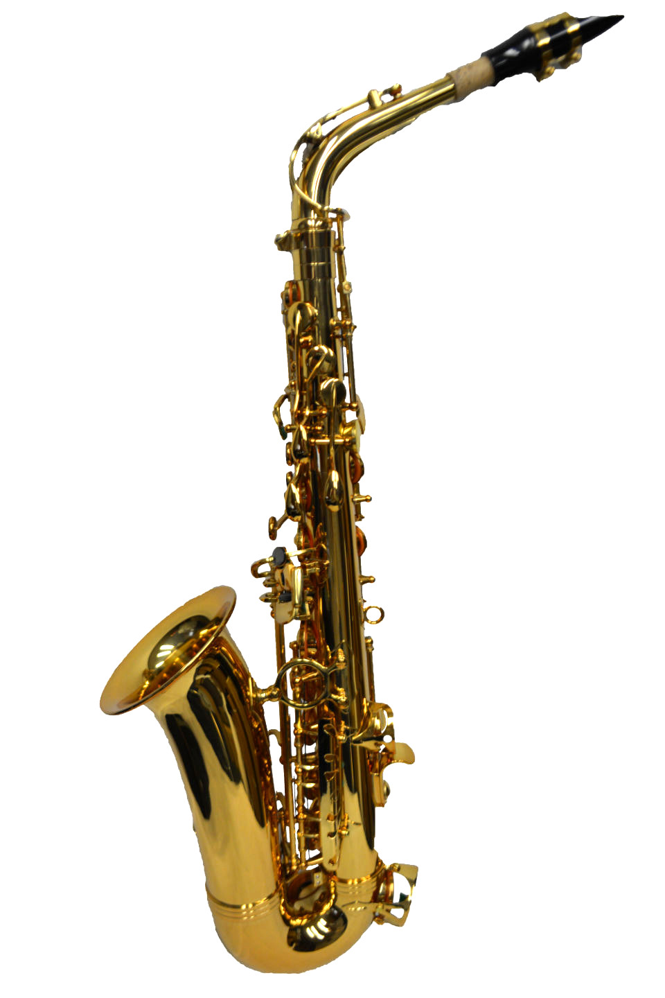 Schiller Elite V Pro Artist Alto Saxophone – Gold Finish w/ Modern Travel Case