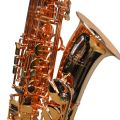 Elite V Pro Artist Alto Saxophone – Bright Copper