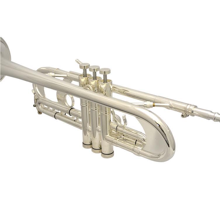 Elite Frankfurt Custom Silver Plated Flash Trumpet