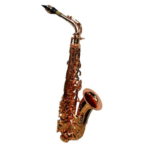 Elite V Pro Artist Alto Saxophone brass